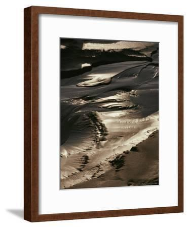 Close View of Tidal Mud Bathed in Sunlight