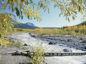 Scenic View of McCarthy Creek in McCarthy, Alaska by George Herben