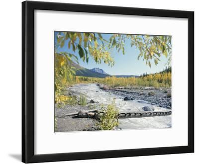 Scenic View of McCarthy Creek in McCarthy, Alaska