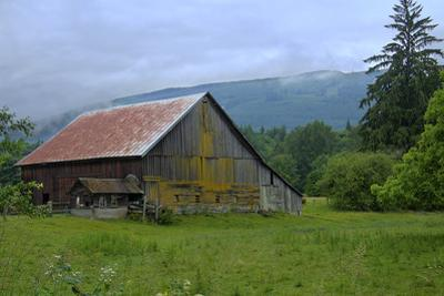 Barn in the Mist by George Johnson