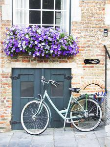 Brugge Door and Bicycle by George Johnson