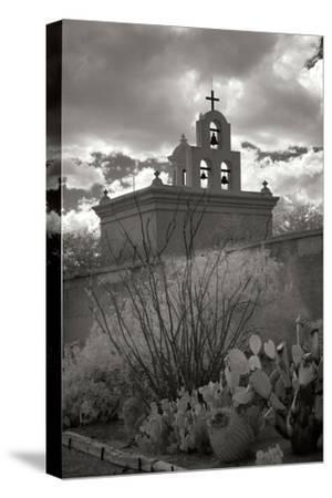 Mission San Xavier III
