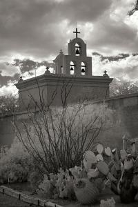 Mission San Xavier III by George Johnson