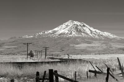 Mt. Shasta II