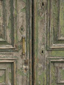 Venice Green Door by George Johnson