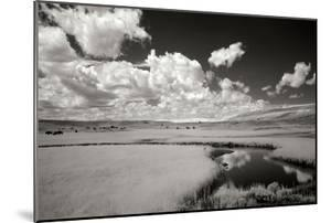 Yellowstone Creek and Clouds I by George Johnson