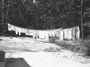 Laundry on a Clothesline Outdoors by George Marks
