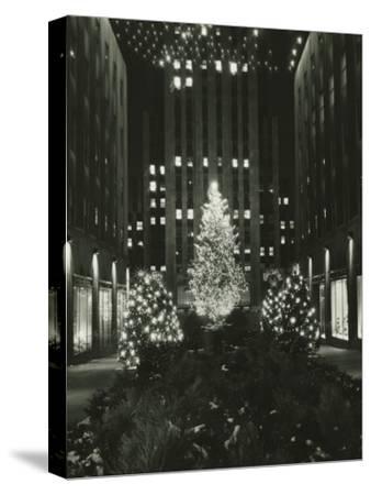 Rockefeller Center Decorated For Christmas, New York City