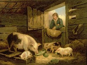 A Boy Looking into a Pig Sty, 1794 by George Morland