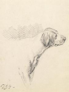 Study of a Hound, 1794 (Pencil on Paper) by George Morland