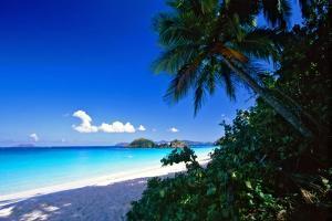 Caribbean Beach, Saint John, USVI by George Oze