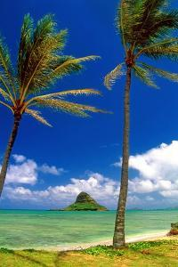 Chinamens Hat in Kaneohe Bay, Hawaii by George Oze