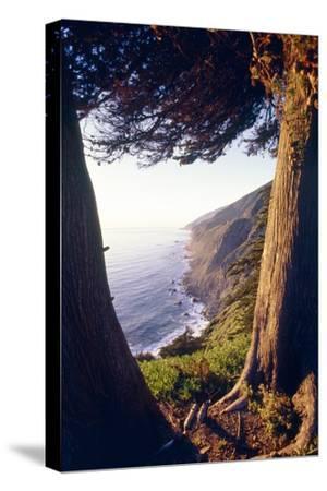 Coastal View at Ragged Point, Big Sur, California