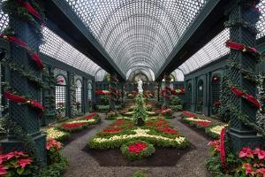 French Indoor Garden by George Oze