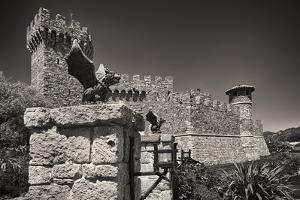 Gargoyles On A Castle Wall by George Oze