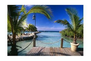 Lagoon View Aruba by George Oze