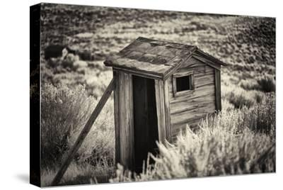 Old Outhouse in the Field
