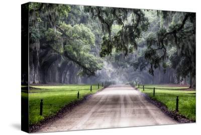 Plantation Road, Charleston, South Carolina