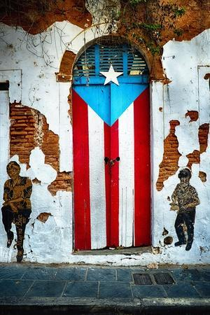 Puerto Rican Flag Door