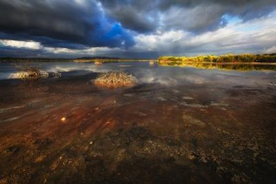 Saltwater Marsh Landscape, Cabo Rojo, Puerto Rico by George Oze