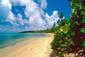 Seven Seas Beach, Fajardo, Puerto Rico by George Oze