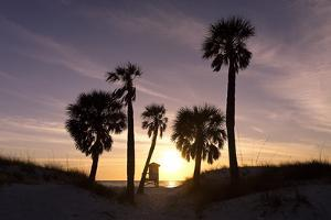 Sunset View, Clearwater Beach, Florida by George Oze