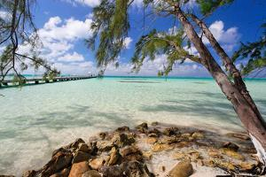 View of the Rum Point Jetty, Grand Cayman Island by George Oze
