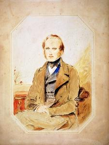 Charles Darwin, English Naturalist by George Richmond