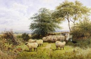 Changing Pastures by George Shalders