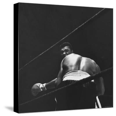1965 Boxing Match Between the Heavyweight Champ Sonny Liston and Challenger Cassius Clay