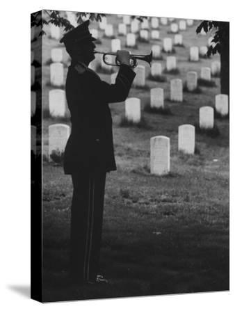 Army Bugler at Arlington Cemetery, During Ceremonies