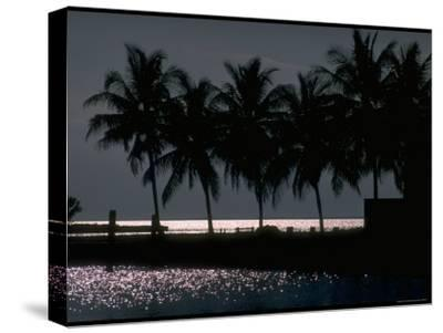 Moonlight Reflected on the Water at Key Biscayne, Florida