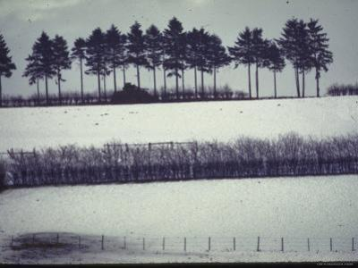 Snowy Landscape Frames Single American Tank Moving Along Distant Road During Battle of the Bulge