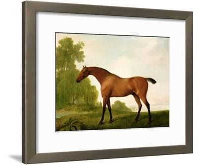 A Bay Thoroughbred in a Landscape, 1801