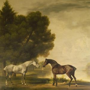 A Grey and a Bay in a Landscape by George Stubbs