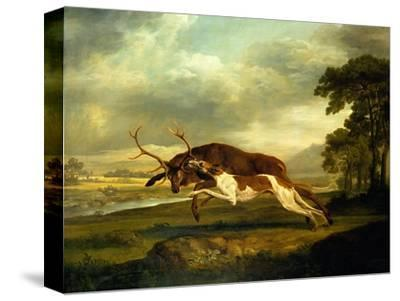 A Hound Attacking a Stag