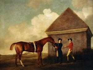 Eclipse', a Dark Chestnut Racehorse, by the Rubbing Down House at Newmarket by George		 Stubbs