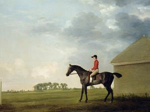 Gimcrack with John Pratt Up on Newmarket Heath, 1765 by George Stubbs