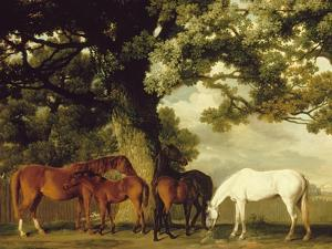 Green Pastures by George Stubbs