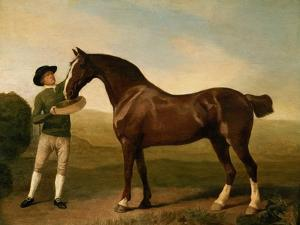Groom Feeding a Bay Hunter in a Landscape by George Stubbs