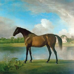 Lord Bolingbroke's Brood Mare in the Grounds of Lydiard Park, Wiltshire, C.1764-66 by George Stubbs
