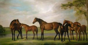 Mares and Foals Disturbed by an Approaching Storm, 1764-66 by George Stubbs
