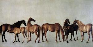 Mares and Foals Without a Background, circa 1762 by George Stubbs