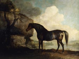 Marske', a Dark Bay Racehorse, in a Rocky River Landscape by George Stubbs