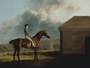 Otho, with John Larkin Up by George Stubbs