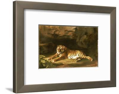 Portrait of the Royal Tiger, C.1770
