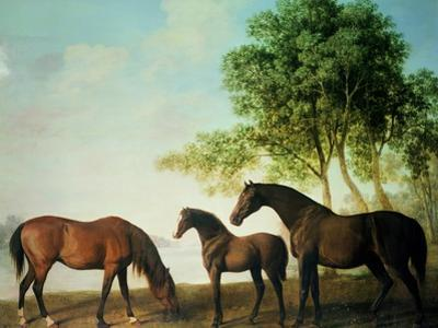 Shafto Mares and a Foal by George Stubbs