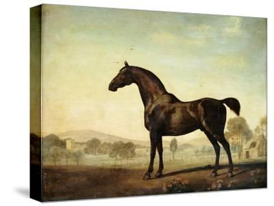 Sweetwilliam', a Bay Racehorse, in a Paddock, 1779