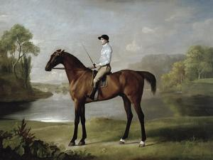 """The Marquess of Rockingham's """"Scrub"""", with John Singleton Up, 1762 by George Stubbs"""