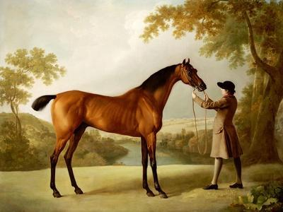 Tristram Shandy, a Bay Racehorse Held by a Groom in an Extensive Landscape, circa 1760